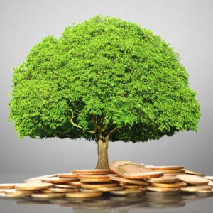 Liberated Investing Workshop Tampa Bay