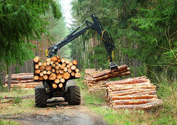 Lumber-Yard-Wood-Other-Investments-in-IRAs